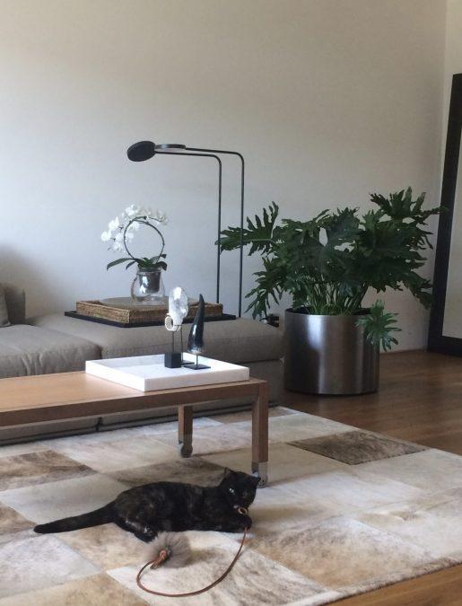Stadsappartement woonkamer